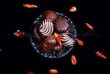 Photos product - chocolate / Photos product - chocolate
