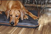 DIVAN without pattern    mattress for dogs