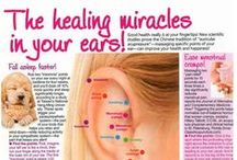 Ear Reflexology / Pressing sensitive points in ears can relieve problems in the corresponding body part