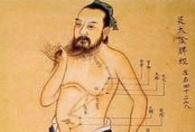 Meridians / Taken from Traditional Chinese Medicine #TCM - Meridian are energy lines that flow through the body on a 24 hour cycle. Meridian Reflexology is an upcoming way of integrating two ancient healing modalities with great results.