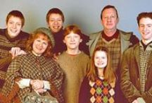 The Weasley Burrow / The Weasley Family from Harry Potter