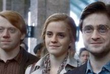 After the Magic of Hogwarts