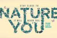 Quotes / Quotes about nature and eco friendly lifestyle.