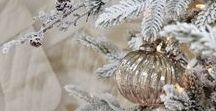 Christmas Trees / Beautiful and classic Christmas trees