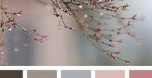 Color Palette / Beautiful color combinations and palettes