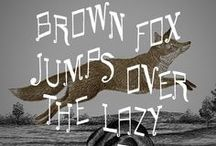The quick brown fox jumps over the lazy dog