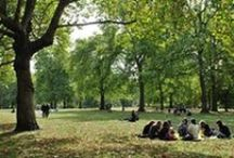 MOOD public park