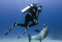 deep_diving