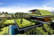 House designs / Modern architecture with a touch of nature and sustainability
