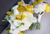 Bridal Bouquets   White & Yellow