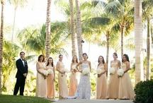 Bride & Bridesmaids   Bouquets   White & Peach