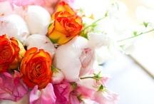 Reception Decor   Centerpieces   White & Pink & Orange