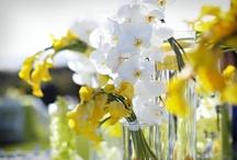 Reception Decor   Centerpieces   White & Yellow