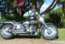 Our Bikes / by Harley-Davidson SXM