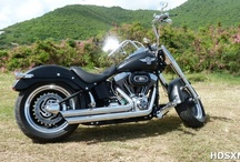 Bikes Worth Riding / by Harley-Davidson SXM
