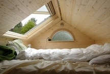 Attic Ideas / by Skooks' Playground