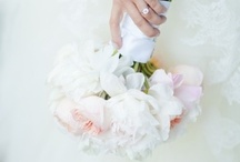 Bride   Bridal Bouquet   White & Pale Pink