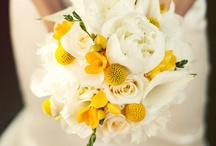 Bride   Bridal Bouquet   White & Yellow