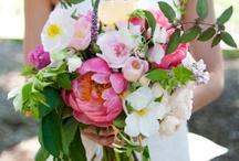 Bride   Bridal Bouquet   White & Hot Pink