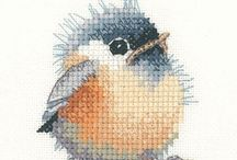 XStitch/Embroidery