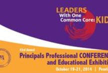IPA PD-Conferences