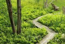 Pathways / Outdoor Pathways