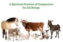 Quotes / Animals, Meditation and Healing