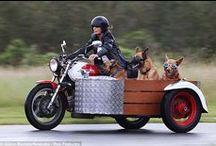 Ciekawostki motocyklowe / Różne i różniste ciekawostki motocyklowe. Na pewno nie sąto zwyczajne pojazdy.