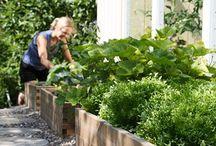 Garden ideas / Small and big ideas for a creative garden. DIY and handcraft.
