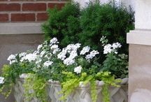 Outdoor pots and containers / Large and small pots, urns for the garden, patio and balcony. So many wonderful options!