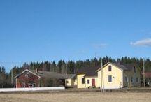 Mannila / Vanhan kaupan uutta kotielämää Mannilan kylässä