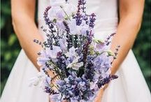 Pretty Bouquets / by Melissa Hughes