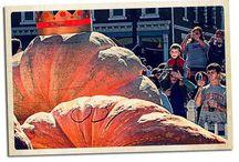 Circleville Pumpkin Show Painting