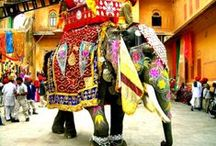 India / Explore the uniqueness of India with these images. Welcome to the incredible country.