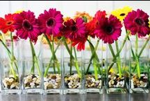 Summer Weddings / Summer is a time for bright vivid color, with a touch of glam.