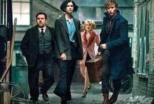 Les animaux fantastiques / Fantastic beasts and where to find hem l Harry Potter's univers
