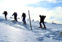Winter in Polen / De winter komt eraan en dan durft het in Polen al eens te sneeuwen. Vooral in het zuiden, ter hoogte van de bergketens Sudeten en Karpaten, ligt er vaak metersdikke sneeuw. Je kan Polen gerust een winterbestemming noemen. Heb je er misschien minder gesoficiticeerde pistes dan in topbestemmingen voor de wintersport, dan vind je er zeker vast dolle sneeuwpret voor een heerlijke gezinsvakantie.