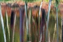Abstract Photography / Abstract Photography prints and posters