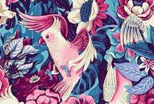 Flower Ilustration