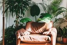 Urban Jungle / We love every kind of plants. Adding a bit of fresh green to your home will lighten up each day!