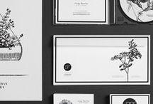[ Design Graphic ]