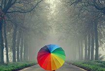 Colour love.....