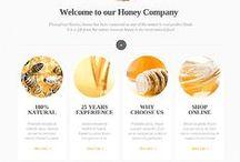 Web Design / Packaging