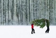 Santa is coming / C'est l'Histoire de Noëlouka