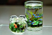 Resin / Resin for miniature dollhouse
