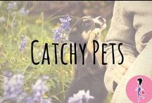 Catchy Pets ★ / All the best pet-related freebies, samples, DIYs, hacks, recipes, money-saving tips, and more to help you and your pets live healthy lives!