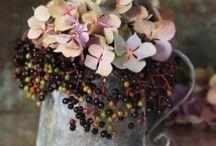 Flower Power Love / Growing & Blooming
