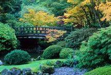 Garden To Relax / #garden #backyard #living #home #decor #relax #design #ideas