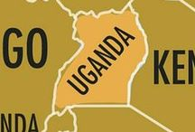 Uganda - A Shared Board / This is a curated list of photos from travelers who have visited Uganda