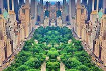 Central Park! Die grüne Lunge von NYC.  / Ob im Winter schneebedeckt, farbenfroh im Herbst, knallgrün im Sommer oder mit toller Blütenpracht im Frühling - der New Yorker Central Park ist der Anlaufpunkt und Herz für alle Bewohner der Stadt... und Eichhörnchen!